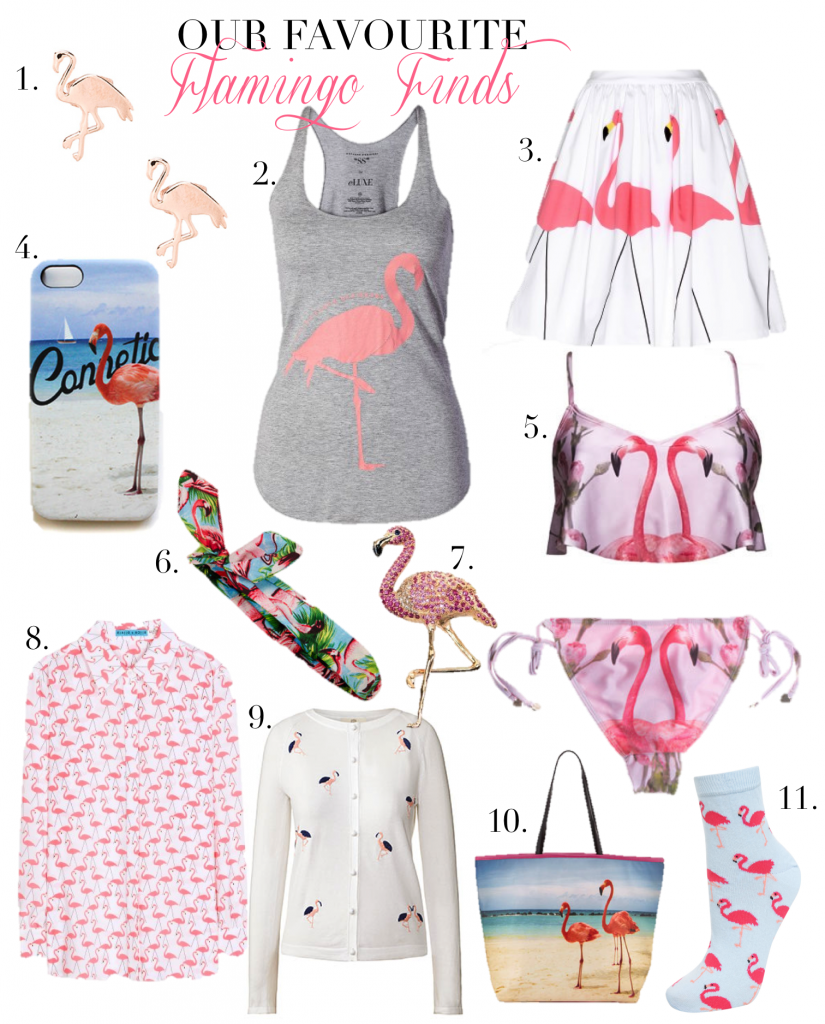 flamingo finds