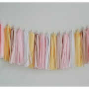 tissue garland french macaron
