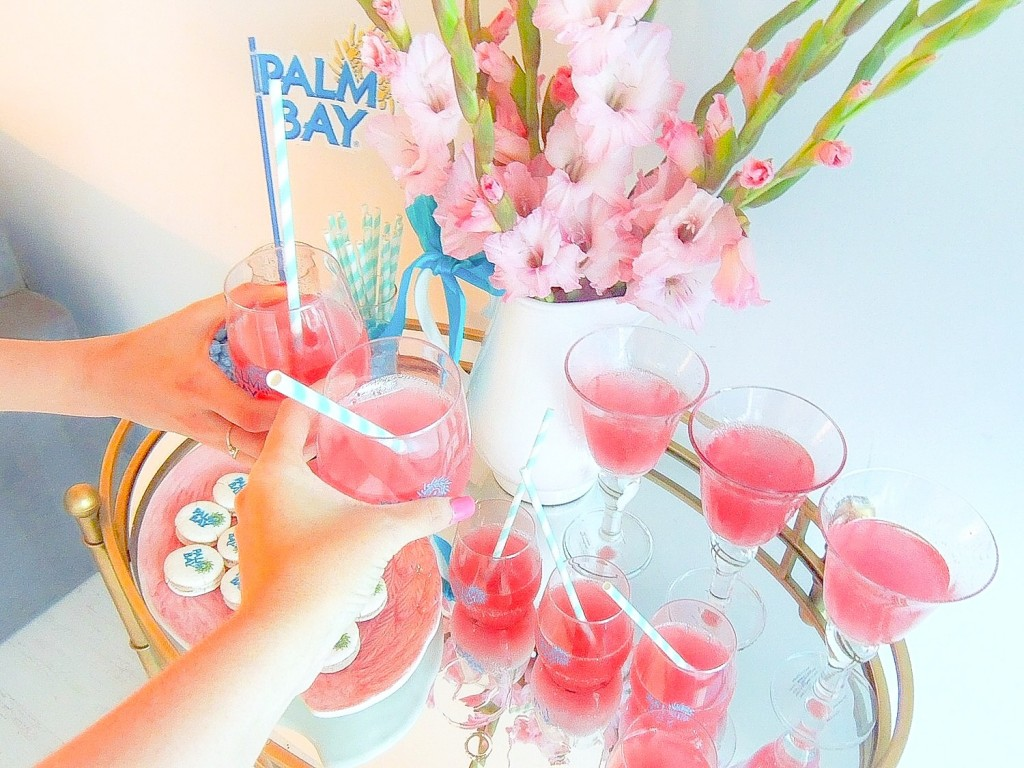 palm bay spritz girls night in 21
