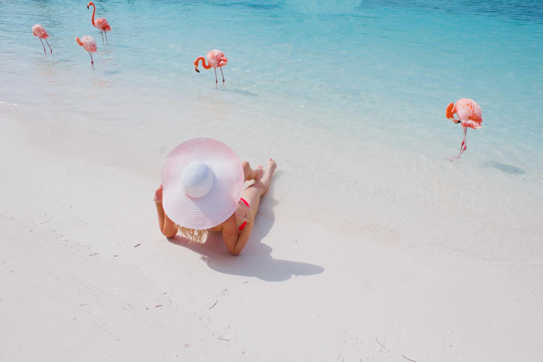 pink-the-town-amanda-losier-flamingo-beach-aruba-147